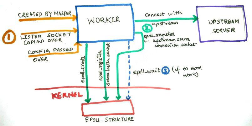 Worker startup